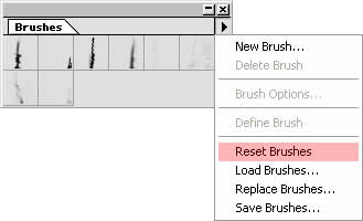 resetting brushes in Photoshop 5.5